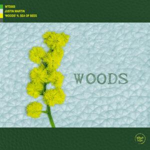 WTD005 - WOODS final